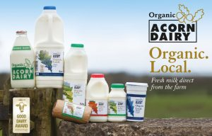 acorn dairy products